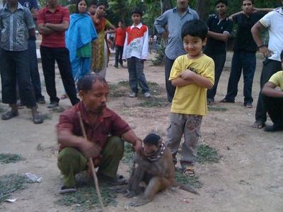 バングラデシュの猿回し